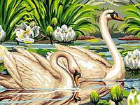 "Картина раскраска по номерам ""Лебеди и лотосы"" набор для рисования"