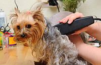 Машинка HTC CT-399для стрижки мелких  животных