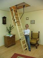 Складная чердачная лестница Оман Prima