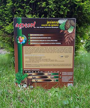 Удобрение Agrecol ОСЕННЕЕ для ХВОЙНЫХ растений 1,2кг (гранулированное), фото 2