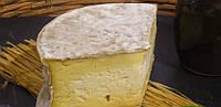 Закваска для сыра Кэрфилли 100 л