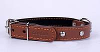 Ошейник COLLAR с украшением и синтепоном 20мм/32-40см 01396, коричневый
