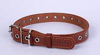 Ошейник COLLAR кожаный безразмерный 20мм/ 50см 01516, коричневый