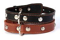 Ошейник для собак COLLAR одинарный с украшениями 35мм/48-63см 02716, коричневый