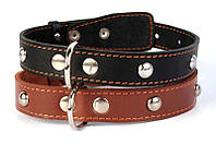 Ошейник для собак COLLAR одинарный с украшениями 35мм/48-63см 02711, чёрный