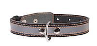 Ошейник для собак COLLAR со светоотражающей лентой 25мм/38-50см 02491, чёрный