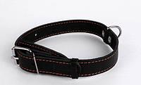 Ошейник для собак COLLAR 35мм/ 48-63см 02731, чёрный