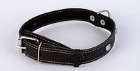 Ошейник для собак COLLAR с синтепоном и украшениями 35мм/48-63см 02771, чёрный