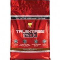 True Mass 1200 4,54 кг - chocolate