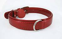 Ошейник лакированный COLLAR brilliance без украшений, ширина 25мм, длина 38-49см, 30823, красный