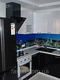 Кухня на заказ Киев со скинали. МДФ перламутр 035, фото 2