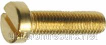 DIN 84 Гвинт з циліндричною голівкою М10 латунь