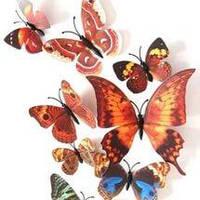 Коричневые бабочки 3D для декораций.Новинка.