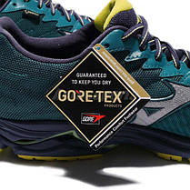 Кроссовки Mizuno Wave Rider 20 GoreTex J1GC1774-05, фото 3