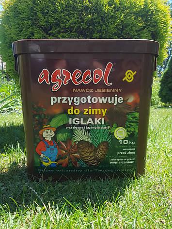 Удобрение Agrecol ОСЕННЕЕ для ХВОЙНЫХ растений 10кг (гранулированное), фото 2