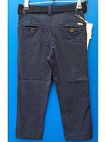 Коттоновые брюки в горох для мальчика темносиние 1-5 лет