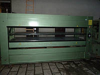 Гарячий пресс PELLEGRINI Р6 3500х1300 двухэтажный для шпонирования