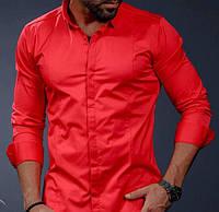 Онотонная классическая рубашка из хлопка