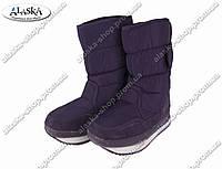 Женские сапоги фиолетовые (Код: ЖББ-36), фото 1