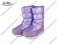 Женские сапоги фиолетовые (Код: ЖББ-45), фото 1