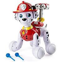 Интерактивный щенок Маршал Paw Patrol Zoomer Marshall. Оригинал, Spin Master