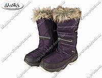 Женские сапоги фиолетовые (Код: ЖББ-50), фото 1