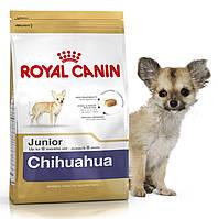 Корм для щенков породы чихуахуа Royal Canin Chihuahua Junior