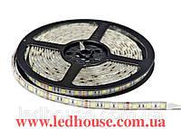 Светодиодная лента SMD 5050 (60 LED/m)RGB в силиконе  IP54
