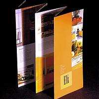 Разновидности буклетов