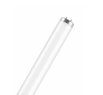 Лампа SA-Type T12 20 / 40 / 65 W G13 OSRAM