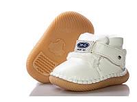 Детская зимняя обувь оптом. Детские зимние пинетки бренда Clibee для мальчиков (рр. с 12 по 15)