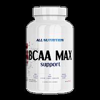 Аминокислоты ALLNUTRITION Bcaa Max Support, 250 г (25 порций) Черная смородина