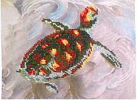 Схема для вышивки Морская черепаха