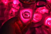 "Гирлянда на батарейках из роз ""Весенняя"", фото 1"
