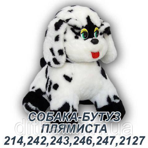Мягкая игрушка Собака Бутуз (23см)