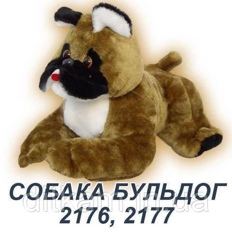 Мягкая игрушка Пес Бульдог (50см)