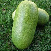 Семена арбуза Чарльстон Грей 0,5 кг, Clause (Клоз), Франция