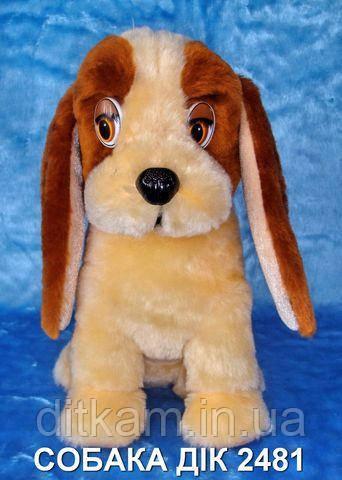 Мягкая игрушка Пес Дик (20 см.)
