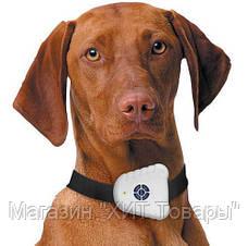 Ультразвуковой ошейник антилай Bark Control Dog Collar, фото 2