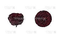 Пионовидная роза стабилизированная Кабукиза шоколад