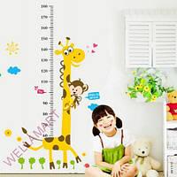 Наклейки в детскую комнату - ростомер