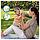 Підгузники дитячі Pampers Sleep&Play Midi 3 (4-9 кг) Ekonom Pack 58 шт, фото 9