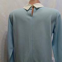 Кофта-блузка женская длинный рукав цвет голубой.