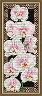 Набор для выкладки алмазной техникой Орхидеи