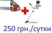 Аренда Бензопилы + Мотокосы всего за 250 грн за сутки.