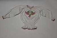 Вышиванка для девочки с длинным рукавом Ветка Калины Размер 6 лет, фото 1