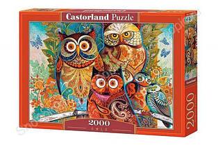 Пазлы Castorland 2000, С-200535