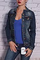 Модный джинсовый пиджак Dimoni (код 1013)