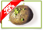 Знижка 25% на 25 днів на елітну насіннєву картоплю и засоби захисту рослин