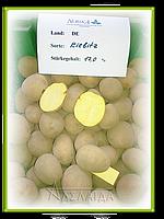 Сорт картоплі: Кібіц. Продаж.